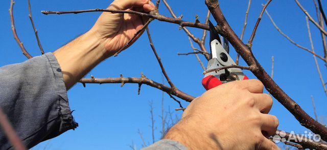 Как сделать из дерево обрезка 611