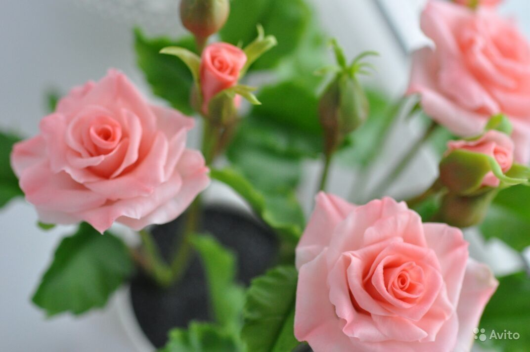 Кустовая роза из полимерной глины ...: https://www.avito.ru/novosibirsk/mebel_i_interer/kustovaya_roza_iz...