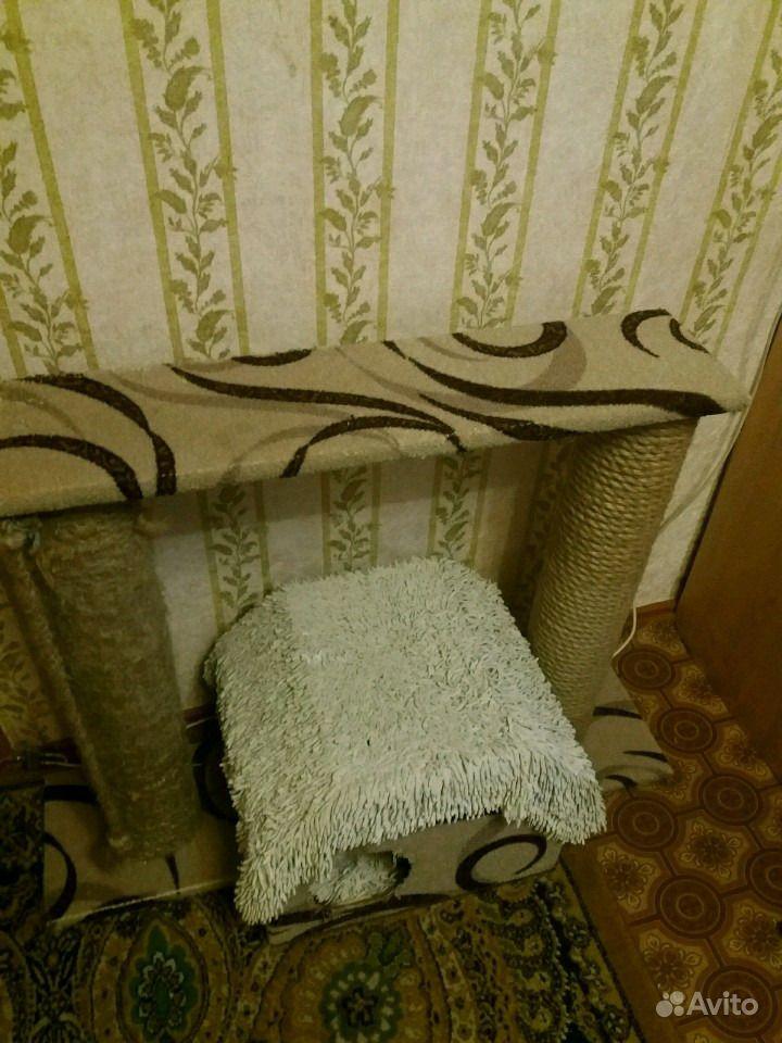 Домик для кошки в Биробиджане - фотография № 2