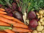 Деревенские овощи с доставкой лук картошка