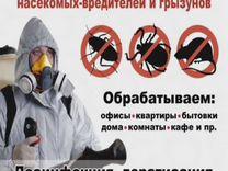 Уничтожение тараканов клопов — Предложение услуг в Москве