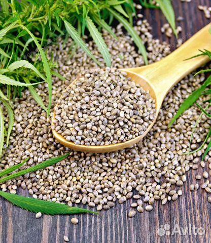 Купить семена конопли хабаровск где произрастает марихуана