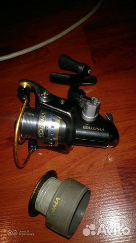 RYOBI Ecusima Pro RD 3000
