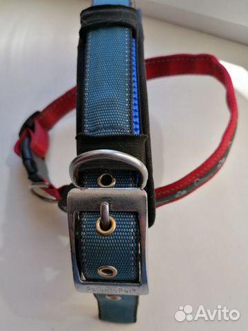 Ошейник. Обувь для собак  89521832456 купить 2