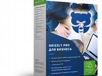 Антивирус Grizzly Pro для Бизнеса 4пк 12 мес